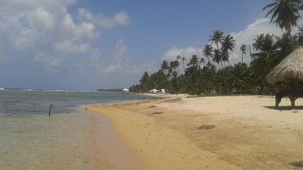 beach in the dr